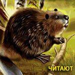 Общее собрание членов литературного объединения «Лесные дали» (Сказка для взрослых)