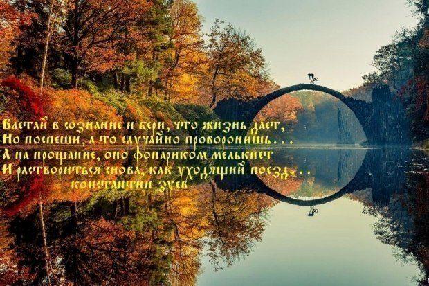 ПОСЛЕДНИЙ ГРОТЕСК ЛЕТА...