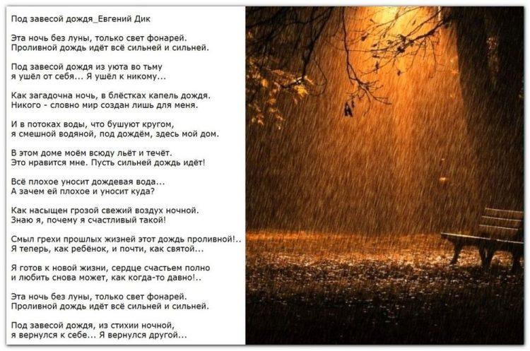 Под завесой дождя