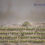 ЛОВИСЬ ДУРАК НА ИНТЕРЕС...